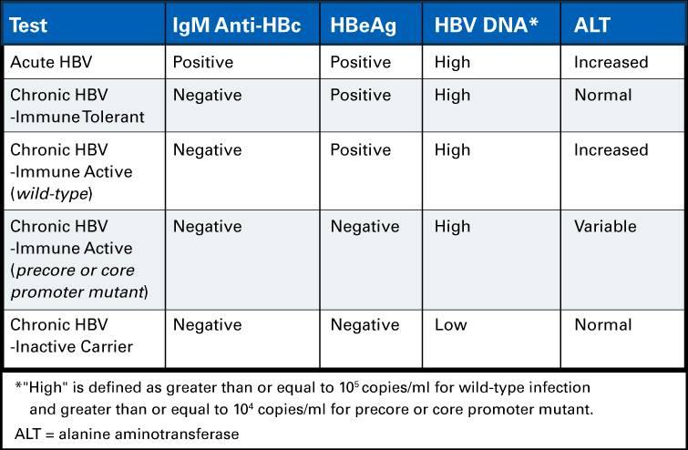 Acute and Chronic HBV