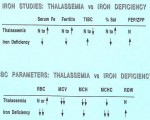Iron and CPC Studies in Thalassemia vs Iron Defiency