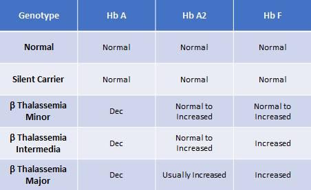 Tabel perbedaan beta thalassemia